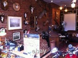 Harley-davidson Flathead&big Twin Ride Control Damper Mount Kit Springer Box 6